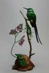 Violet-tailed Sylph and Orchids SOLD