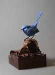 """Splendid""