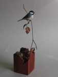 Miniature Black-capped Chickadee