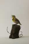 12-30-10 