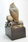 miniature great horned owl, back view