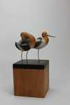 miniature american avocets