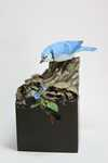 miniature blue jay Sold