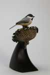 Black-capped Chickadee and Sunflower