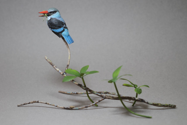 Blue-breasted Kingfisher and African Mantis