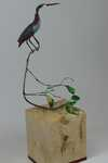 """Forest Bird""
