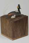 """TESTING THE WATERS""