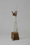 Marsh Wren