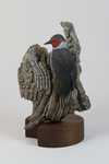 """Clark's Companion""