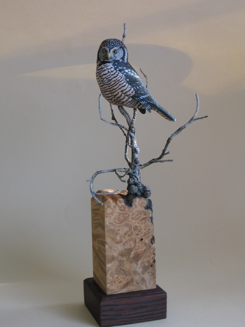 Miniature Hawk Owl