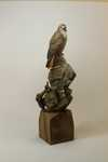 Red Tailed Hawk Sold